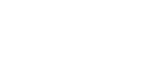 The Bearded Coach logo
